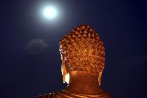 buddhajayanti-11